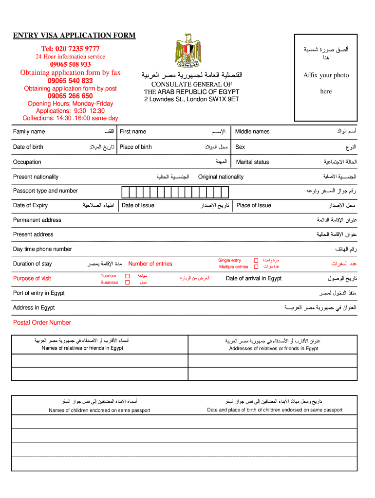 Egypt Visa Application Form Download Pdf Fill Out And Sign Printable Pdf Template Signnow
