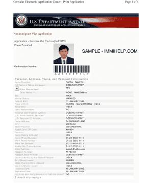 Complete the Online Visa Application Form DS