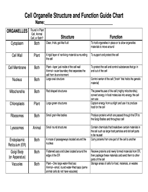 Parts of plant cell and their functions pdf to word