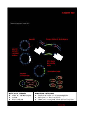 Modeling Bacteria Transformation Worksheet Answer Key - Fill Out and ...