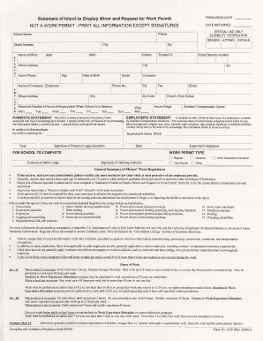 graphic about Printable Workers Permit identify Get the job done allow for software variety colorado - Fill Out and Indicator