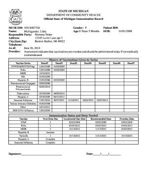 picture regarding Printable Immunization Record referred to as Country of Michigan Formal Immunization Background MCIR Historical past